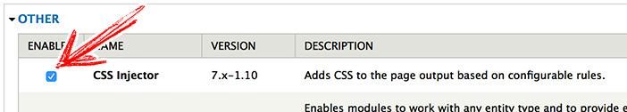 启用 CSS Injector 模块